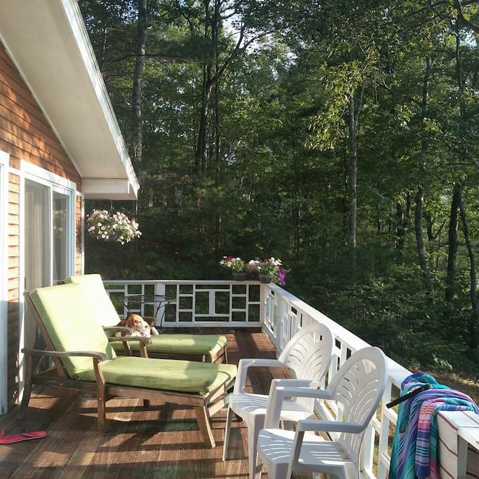 Rear deck overlooking steps to lake to swim in or boat on.