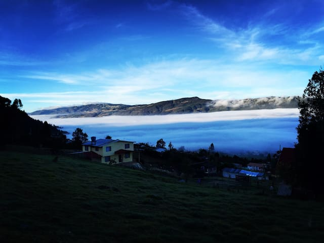 Fog / Neblina