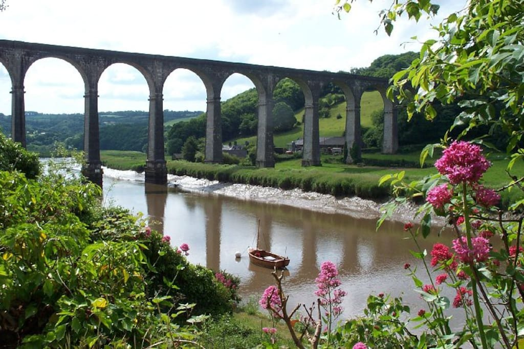 Calstock to Cotehele Walk