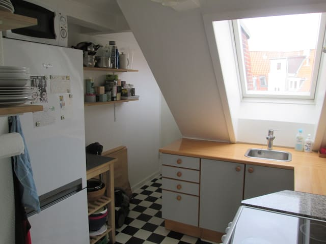 2 room apartment near centre, beach and airport - København - Apartment