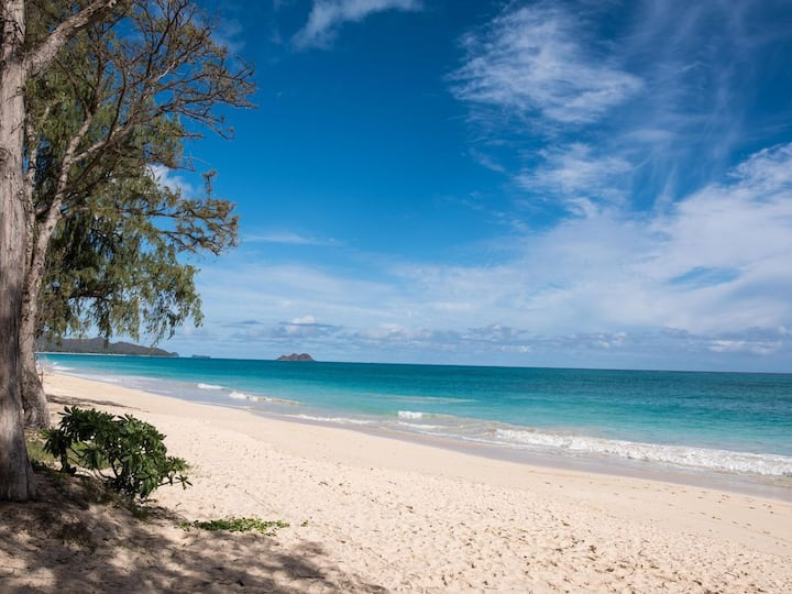 Beach Paradise 3bdrm w a/c, 2 bath,300 ft to Beach