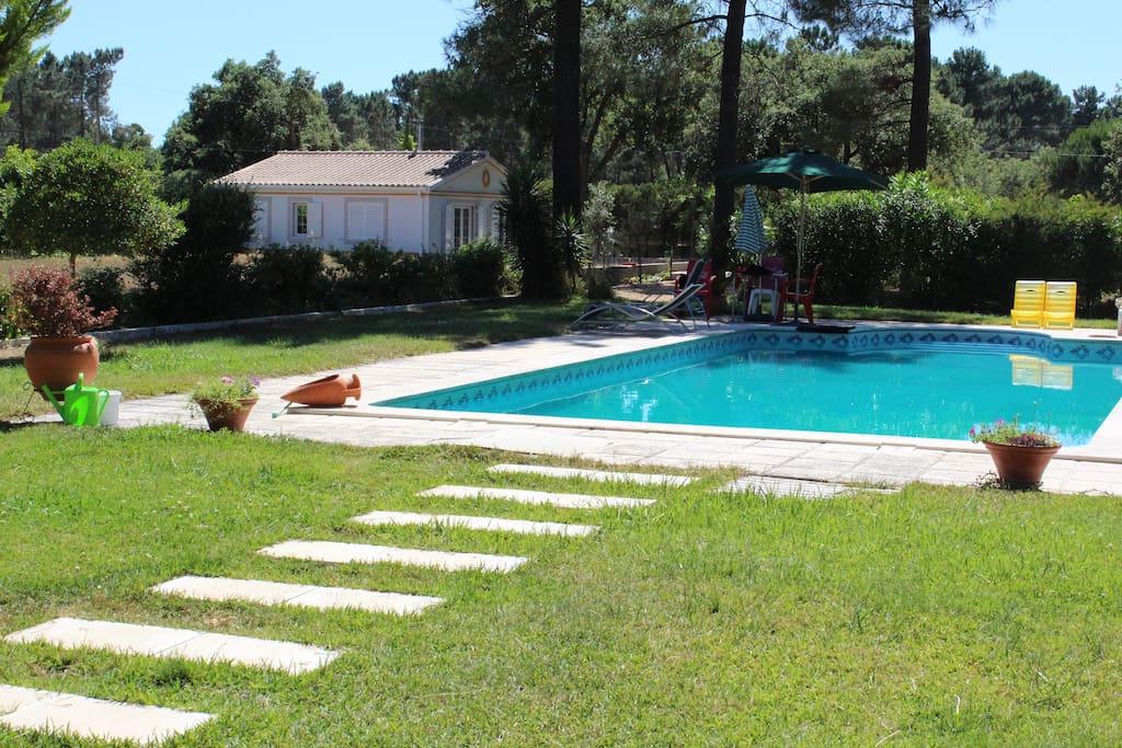 Piscina e jardim/ Swimming pool with garden