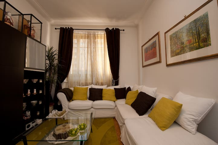 Cozy Bedroom in Center of Geneva - Geneva - Apartemen