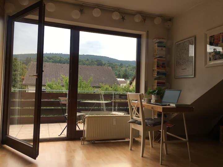 Heidelberg entdecken und dabei entspannen
