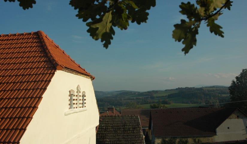 Macha farm - the house from 1600  - Drážov - บ้าน
