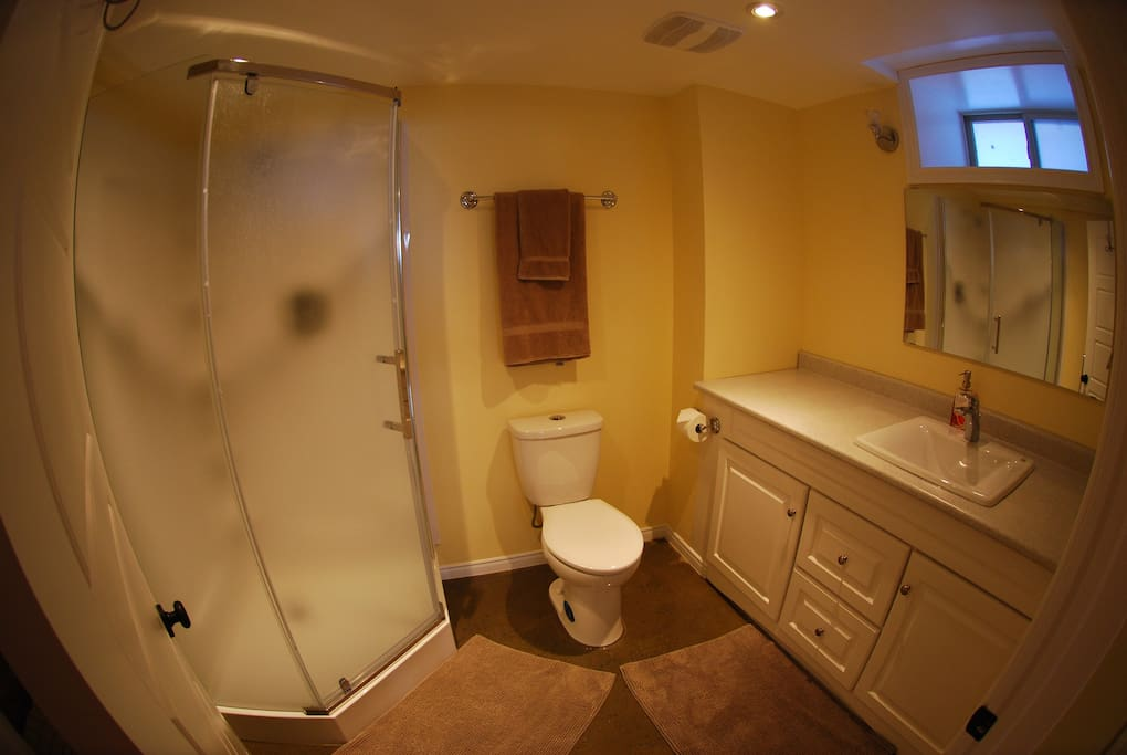 Spacious bathroom with enclosed shower and large vanity.