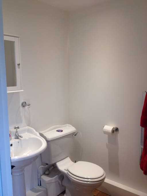 Ensuite with large walking shower - which you cant see!