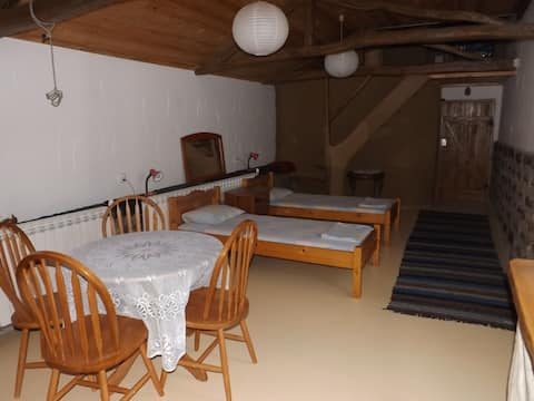 Eco studio apartment in the Tortoise Centre