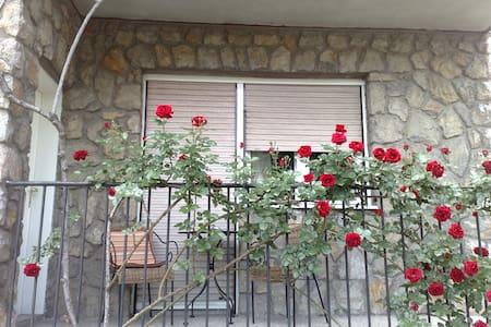 Rose garden apartment - Slavonski Brod - Casa