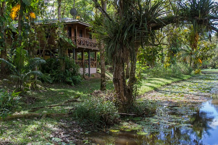 Hacienda Jacana - Nightjar Cottage