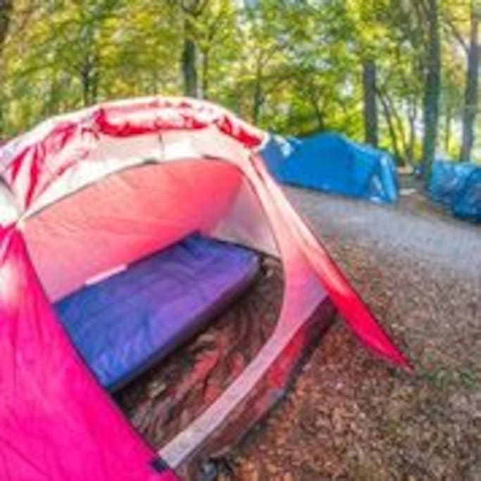 Solo tent (€20 extra per night)