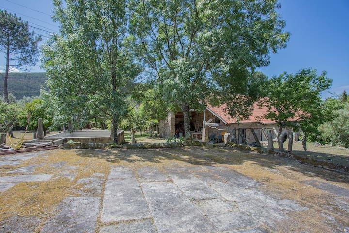 Liiiving in Caminha | Charming Garden Villa