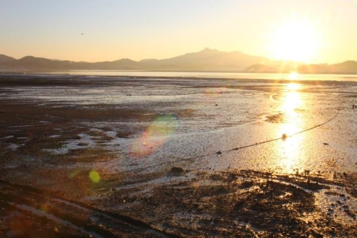 율하우스 : 갯벌체험 + 바다전망 태안펜션 (원룸형,  10평, 102호)