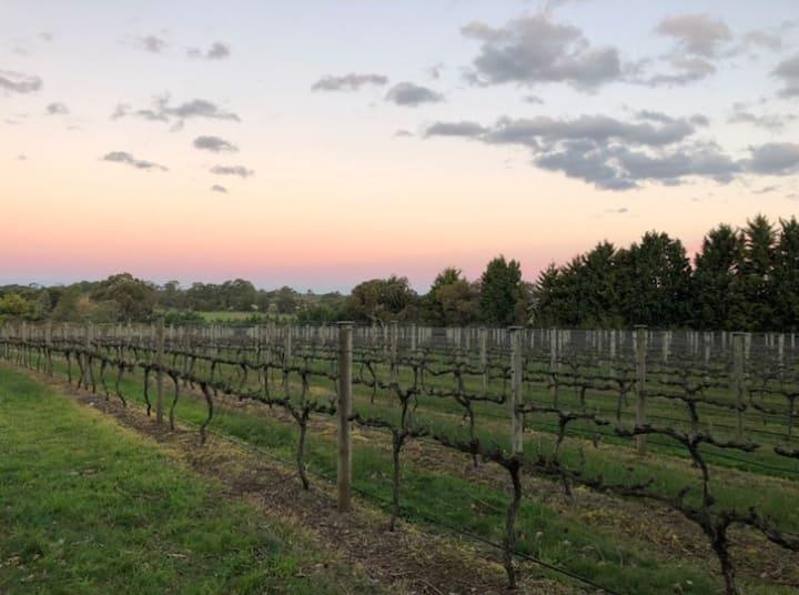 Vineyard Hideaway