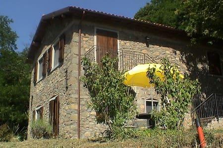 Eco Farmhouse with horses Castagni2 - Castiglione di Garfagnana