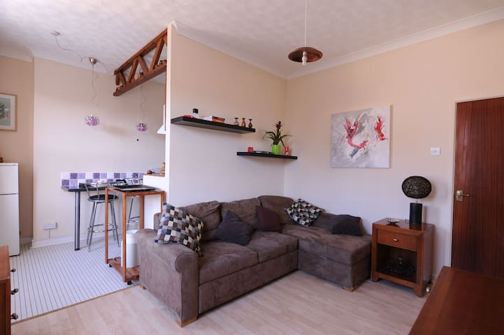 Cosy apartment in Southsea - Portsmouth - Daire