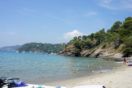 villa de charme en bord de mer - Rayol-Canadel-sur-Mer