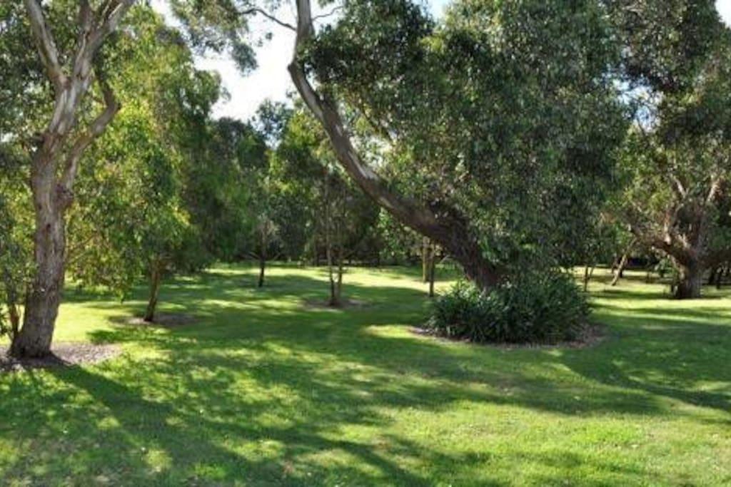 Beautiful peaceful private gardens