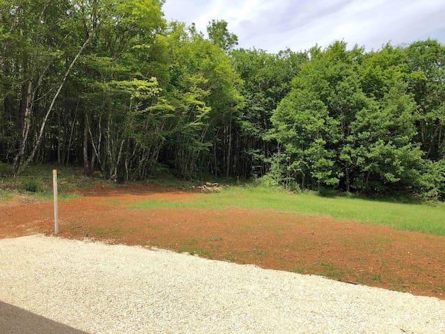 Jardin arrière avec bois d'un côté et clôture de l'autre