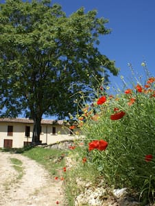 Enjoy your stay with us in Todi - Acquasparta - Penzion (B&B)
