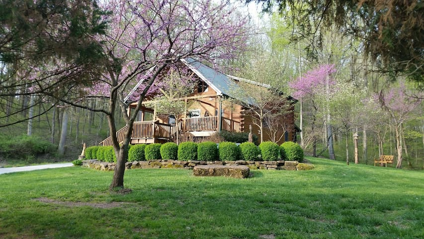 Wise Old Owl Cabin Fall Couple Retreat 5 STAR