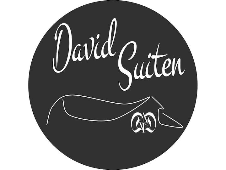 DAVID SUITEN - DOUBLE BED ROOM GROSSECK, luxury