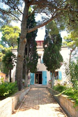 Beautiful Villa on Small Island - Mali Losinj - Villa