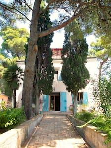 Beautiful Villa on Small Island - Lussinpiccolo - Villa