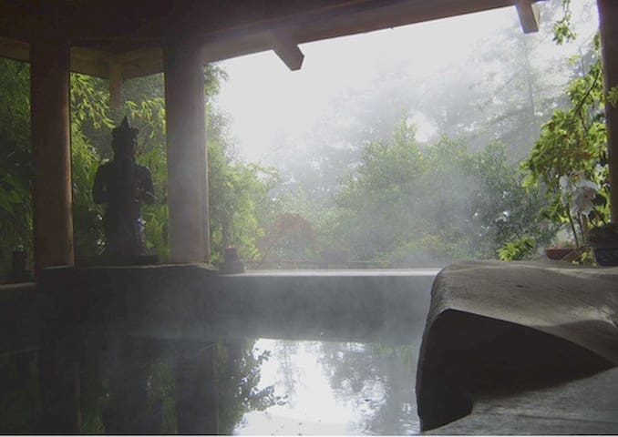 Giant stone hot tub that is 5ft deep and large enough to comfortably fit 10 people.