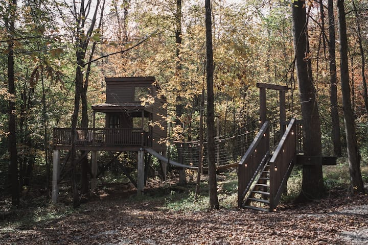 Treehouse Village - The Shack
