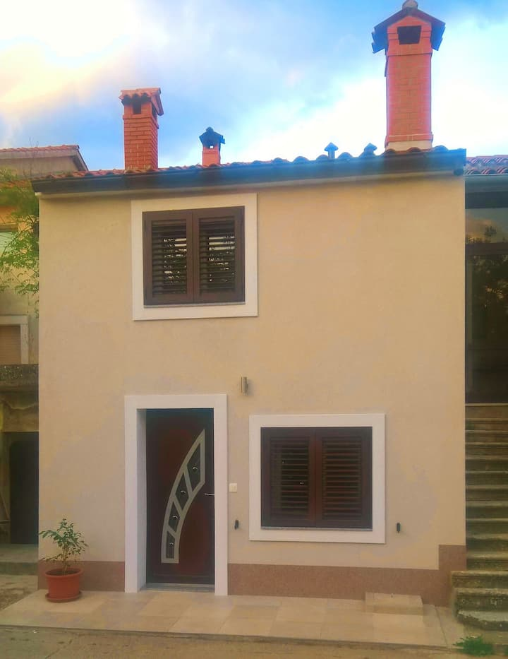 House for 3 persons with WLAN in Kršan R78550