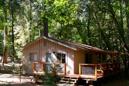 Maple - Creekside Cottage in the Woods - Cobb - Mökki