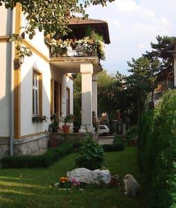 Arandjelovac center near the spa - Aranđelovac - Huis