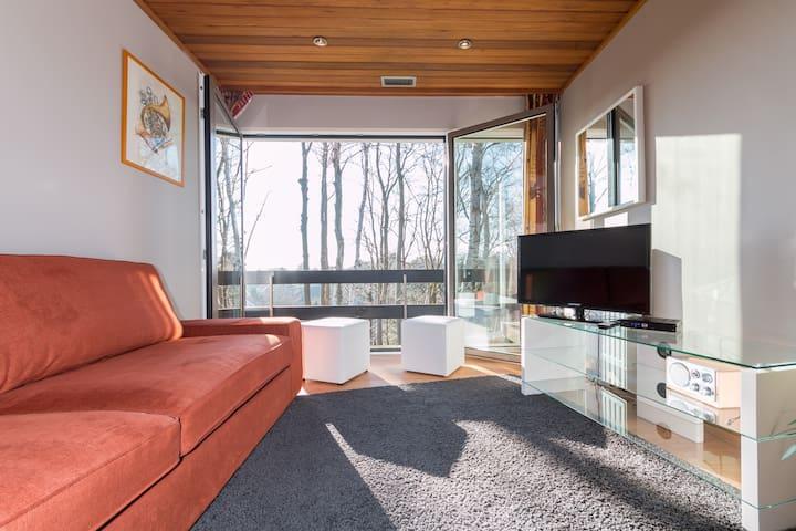 Living room with convertible sofa / salon avec lit convertible