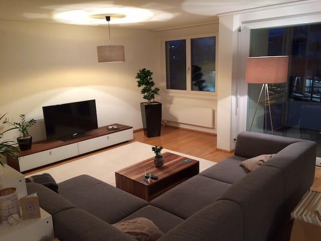 Stilvolle, helle und grosse 3.5-Zimmer-Wohnung - Zug - Apartamento