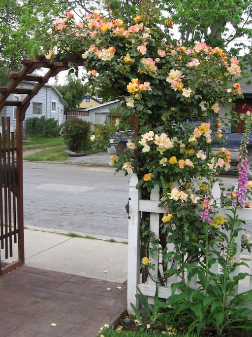 Rose arbor at street entry