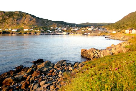 Come see how the Whales dance! - Portugal Cove-St. Philip's