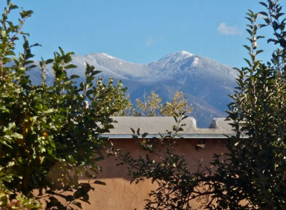Taos Mountain, seen from the house.