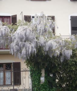 Wisteria, near Turin - Nichelino - Bed & Breakfast
