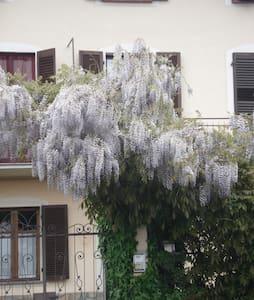 Wisteria, near Turin - Nichelino - 家庭式旅館