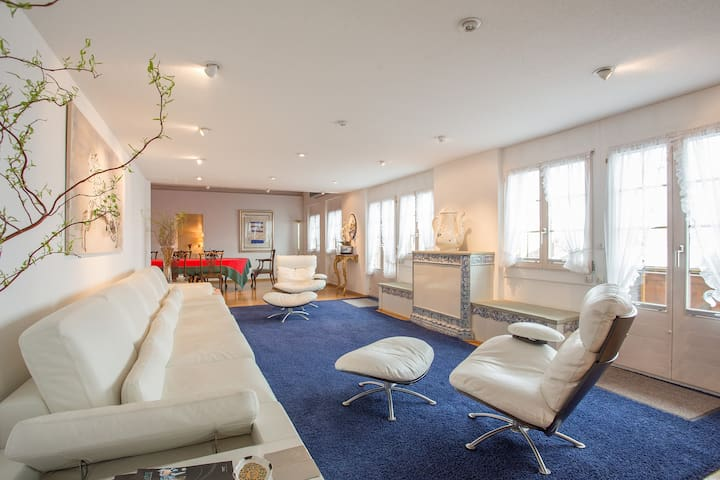 GSTAAD - Mys Dachli -  7 Bedroom Luxury Loft Apt