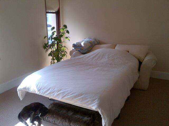 Double room in a  Town House Close to City