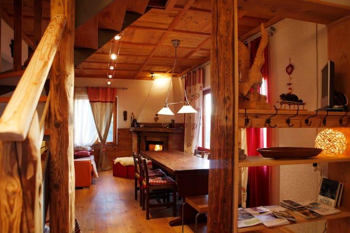 Chalet Baita Marimonti Dolomiti view - Lagolo - Houten huisje