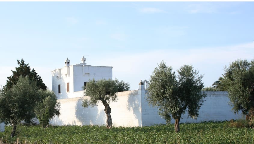 Masseria Torremossa - Matrimoniale - Fasano - Bed & Breakfast
