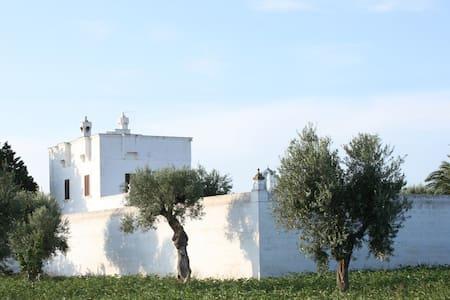 Masseria Torremossa - Matrimoniale - Fasano - Bed & Breakfast