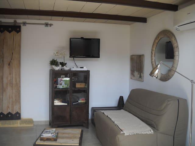salon canapé lit, téléviseur, climatisation
