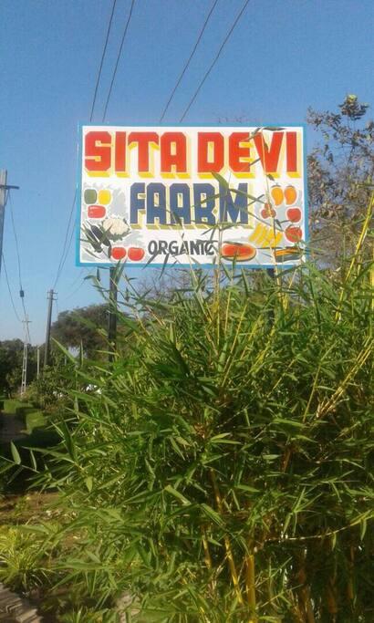 Name of the Farm