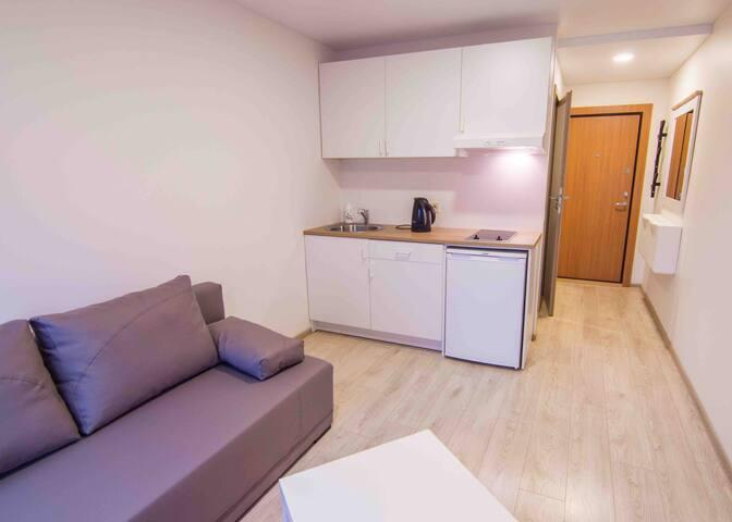 """Cozy studio apartment """"Norway"""""""