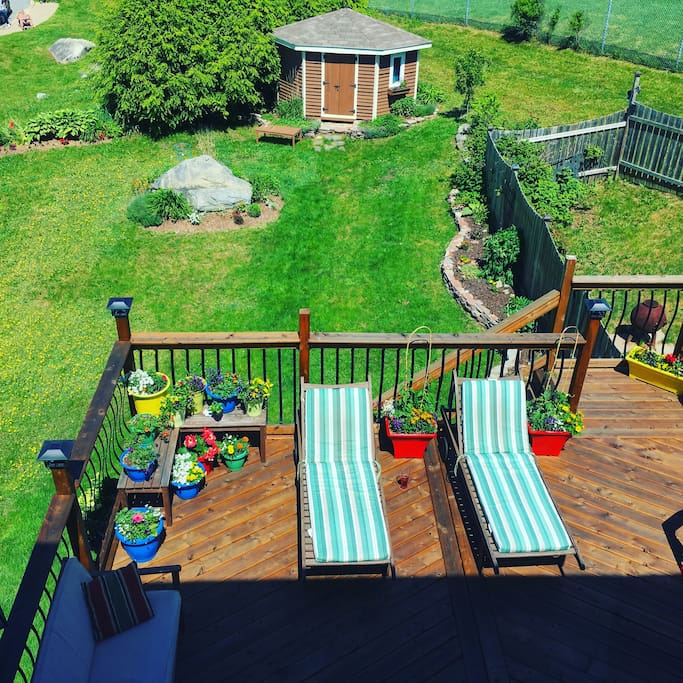 Quiet and private deck and back yard