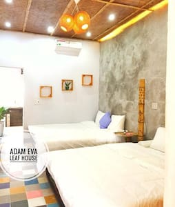 Adam Eva Leaf House